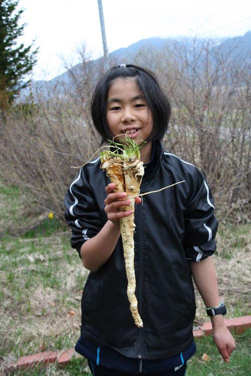 2010.5.10  春一番の恵み_d0160199_21312310.jpg