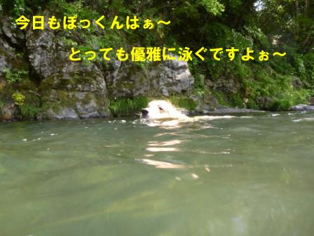 f0176830_19332714.jpg