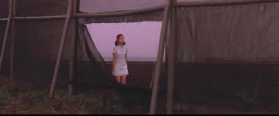 藤田敏八監督『八月の濡れた砂』(日活映画)その2_f0147840_2241675.jpg