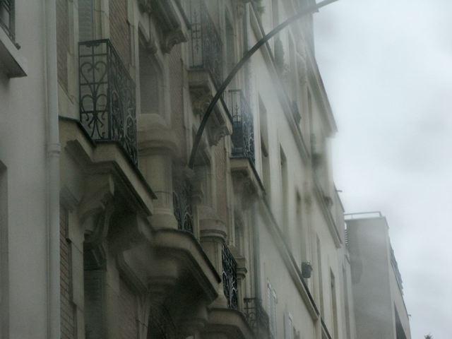 雨の日も又〜♪桐の花が見事〜♪♪(パリ17区ーフランス)_f0119071_7302280.jpg