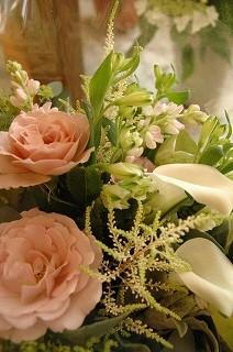 母の日のご来店ありがとうございました♪_e0130779_18314981.jpg