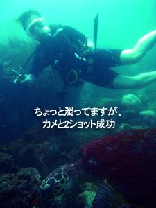今日が本番?ピピ島です!_f0144385_22153359.jpg