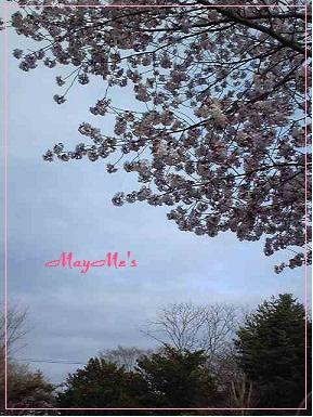 MayMe'sのカフェレッスン♪_d0126721_2195139.jpg