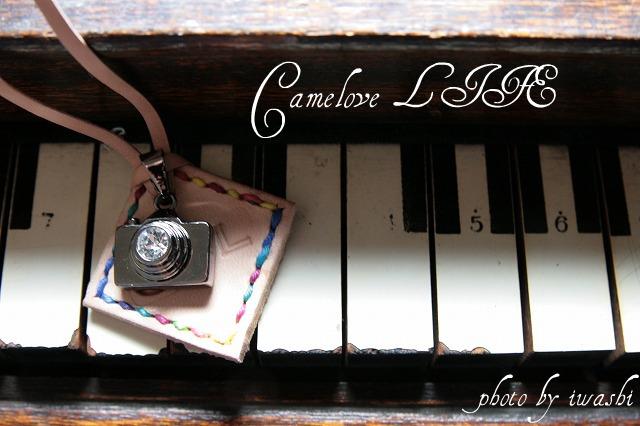 Camelove LIFE_d0161526_104418.jpg