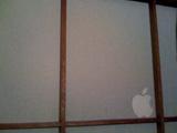 Apple in 障子_c0006432_20235359.jpg