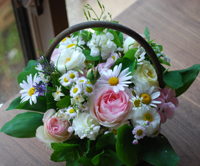 花の精は_c0085543_22115449.jpg