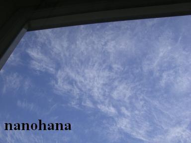 f0210360_1484410.jpg