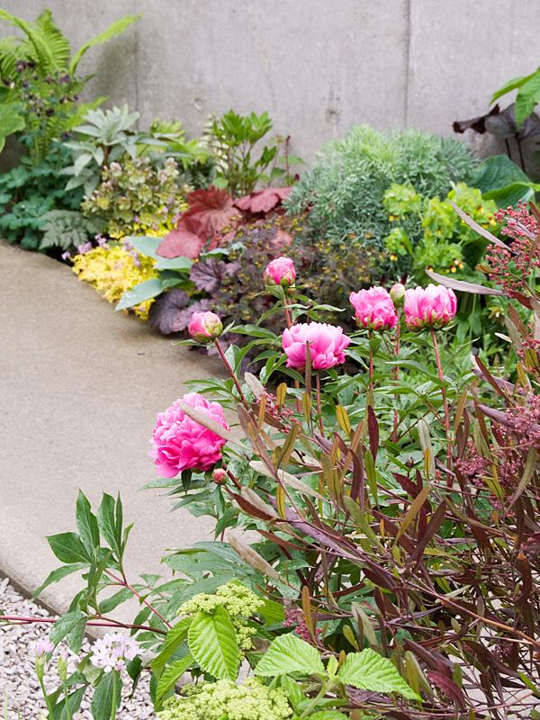 中国的乙庭 其壱  芍薬のある風景_f0191870_19745100.jpg