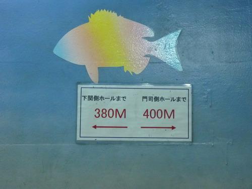 b0052108_002218.jpg