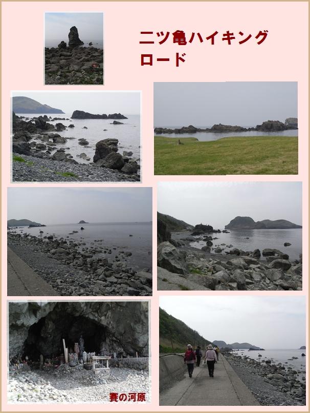 二つ亀・大野亀ハイキング_c0073015_2314181.jpg