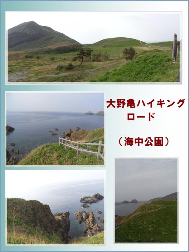 二つ亀・大野亀ハイキング_c0073015_2322628.jpg