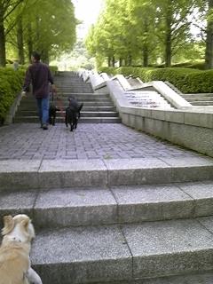 f0148927_18265170.jpg