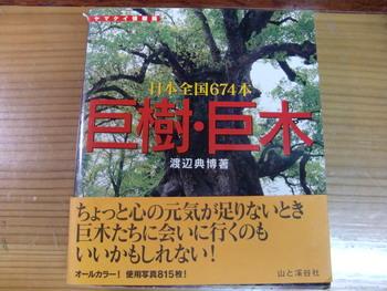 c0183137_521447.jpg