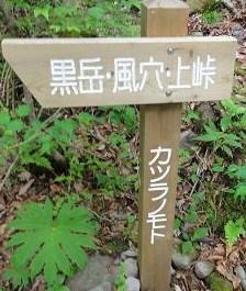 九重・黒岳へ、シャクナゲ満開!_e0164643_20485266.jpg