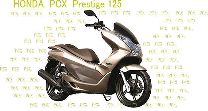 PCX  プレステージ_f0178858_18455227.jpg
