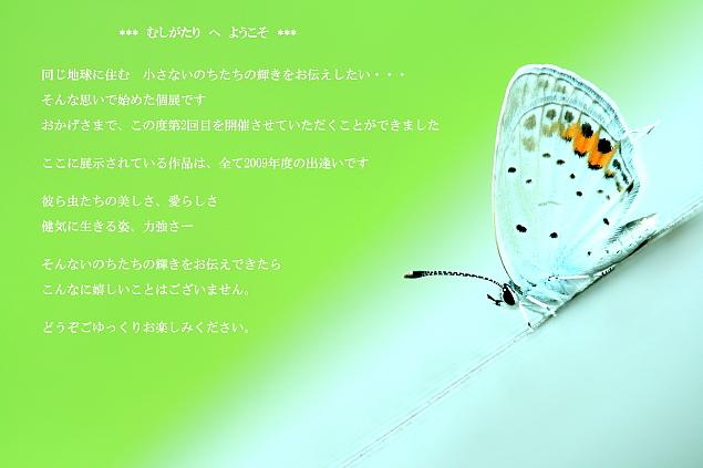 c0195662_2350114.jpg