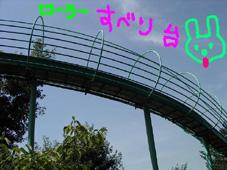 b0035275_313399.jpg