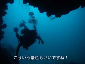 サメが戻ってきた!!_f0144385_21173841.jpg