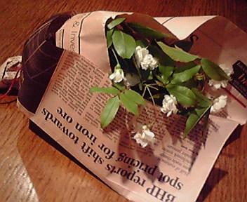 木香薔薇*_e0183990_1364592.jpg
