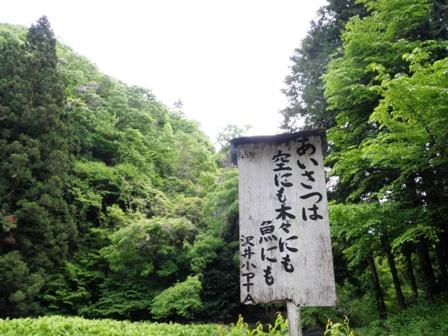 風光る陣場山トレイルランニング_d0122797_06418.jpg