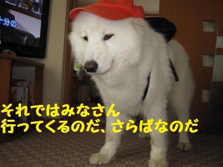 f0212597_13352979.jpg