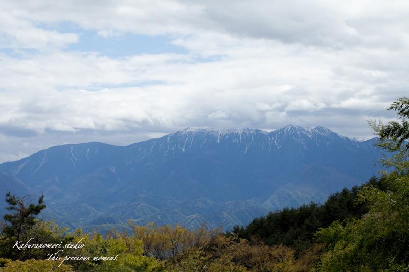 山麓の若葉、八重桜や梅、野草の花に光降り注ぐ_c0137403_1922289.jpg
