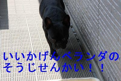 b0136826_10351474.jpg