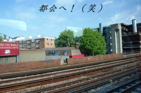 ボリュームたっぷり☆豆板醤焼き肉の蕎麦和え_d0104926_5571090.jpg
