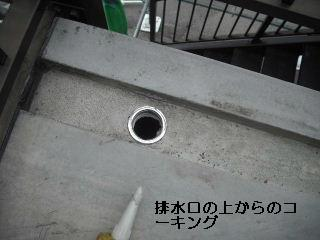 f0031037_17492121.jpg