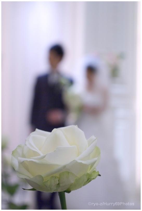 Happy wedding_e0063851_1901792.jpg