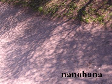 f0210360_15443254.jpg