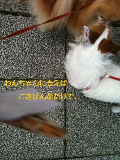 b0182968_10361179.jpg