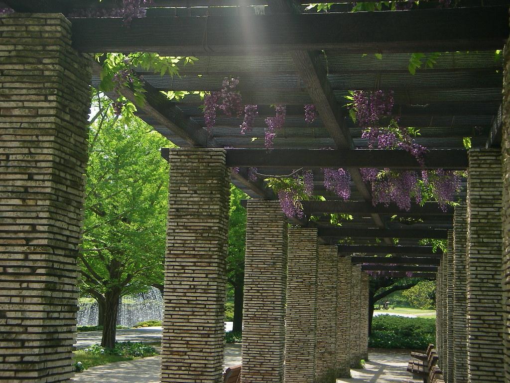5月の記念公園_b0172896_1132537.jpg
