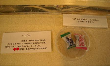 葦舟みたま号、海の博物館へ_b0076008_11193424.jpg