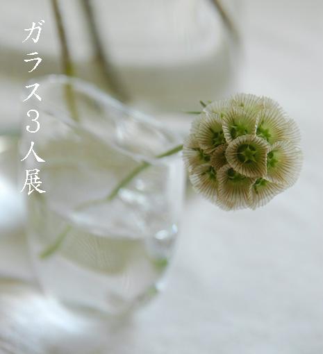 ガラス3人展〜1_d0023111_14402883.jpg