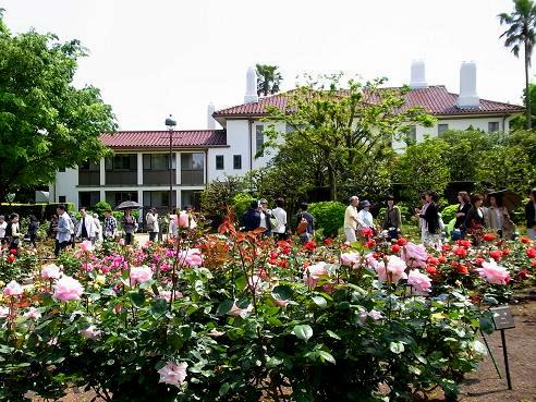 花を愛でながら横浜山手西洋館めぐり_c0192215_5454910.jpg