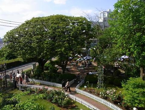 花を愛でながら横浜山手西洋館めぐり_c0192215_6411451.jpg
