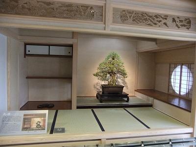さいたま探訪(7)~大宮盆栽美術館・清香園_e0173645_19342721.jpg