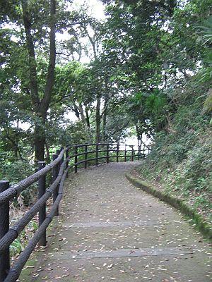 "HAKUDOU師匠と""日田""巡行(その5)・・・三隈川と""日隈=亀山""_c0001578_19353492.jpg"