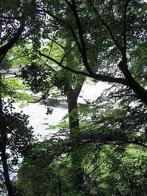 "HAKUDOU師匠と""日田""巡行(その5)・・・三隈川と""日隈=亀山""_c0001578_1935507.jpg"