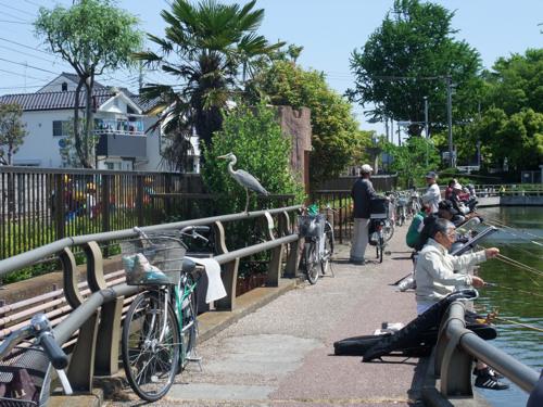 初夏の公園_c0173978_121731.jpg