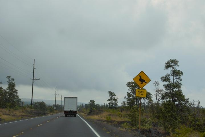 ハワイ島旅行記2010 ー3日目・ハワイ島ほぼ1周ドライブ前半(その3:ボルケーノ)- _f0189086_14503424.jpg