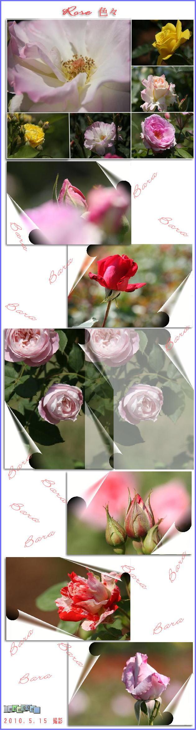 f0164592_7584610.jpg