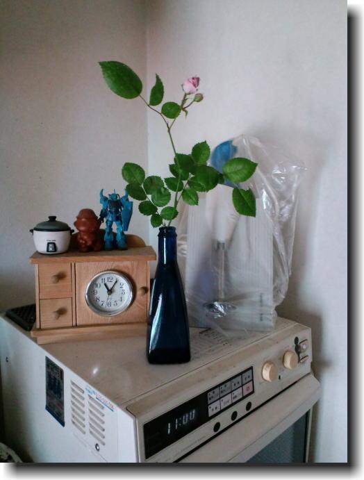 今年もミニバラが咲きました。_e0014000_22261795.jpg