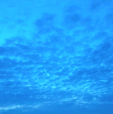 Blue_a0133915_18261377.jpg