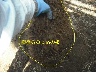 f0031037_2120148.jpg