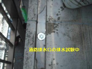 f0031037_21245410.jpg