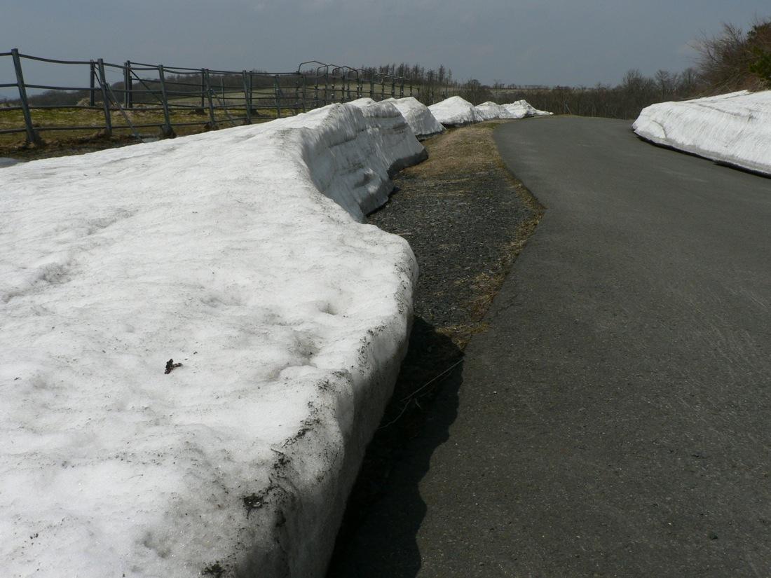 残雪の山を行く_d0001843_22425184.jpg