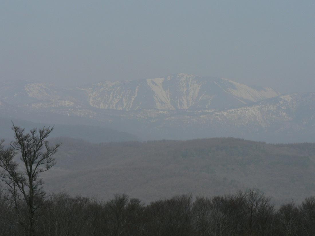 残雪の山を行く_d0001843_22474177.jpg
