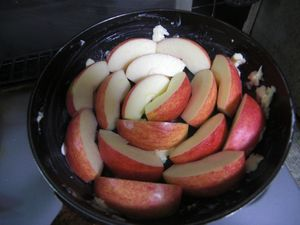 皆で作ろうkeiの超手抜きりんごパン!_e0151349_1347043.jpg